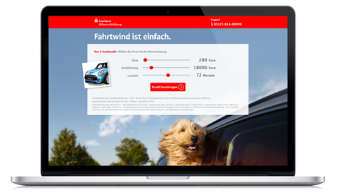Briard-Lucy-Sparkasse-demo-landingpage