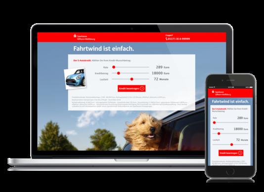 Briard-Lucy-Sparkasse-kampagne-autokredit-header