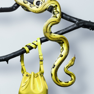 Reticulated python and its preference in bags